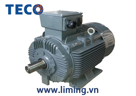 Motor TECO AESV 4P 20HP