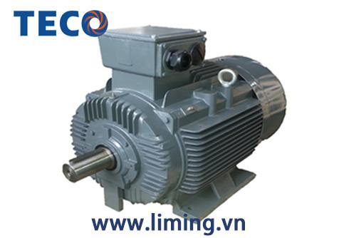 Motor TECO AESV 4P 40HP